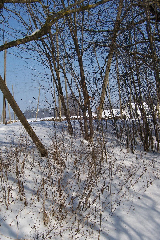 Winterbilder-009.jpg